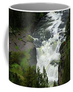 Springs Roar Coffee Mug
