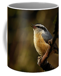 Spring Song - 365-352 Coffee Mug by Inge Riis McDonald