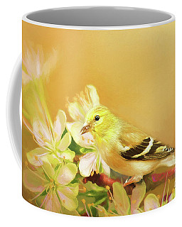 Coffee Mug featuring the photograph Spring Song Bird by Darren Fisher