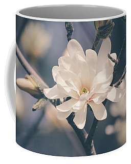 Coffee Mug featuring the photograph Spring Sonnet by Viviana  Nadowski