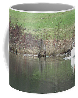 Spring Swan Coffee Mug by Wendy Shoults