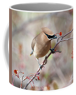 Spring Thief Coffee Mug