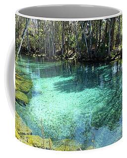 Spring Three Of Three Sisters Springs Coffee Mug