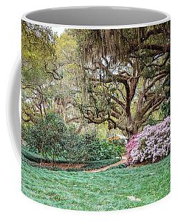 Spring Azaleas In Florida Coffee Mug