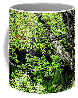Spring Time By The River Coffee Mug