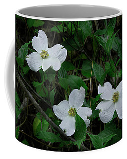 Coffee Mug featuring the photograph Spring Time Dogwood by Mike Eingle