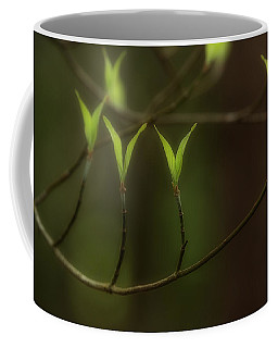Spring Time Coffee Mug by Mike Eingle