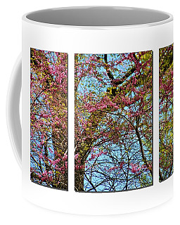 Coffee Mug featuring the photograph Spring Trees  by Elaine Manley