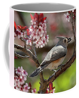 Spring Tufted Titmouse 2018 2 Coffee Mug