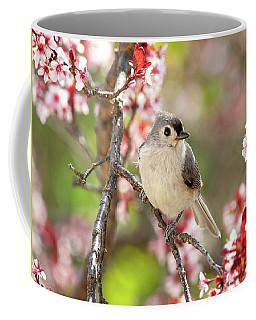 Spring Tufted Titmouse 2018 Coffee Mug