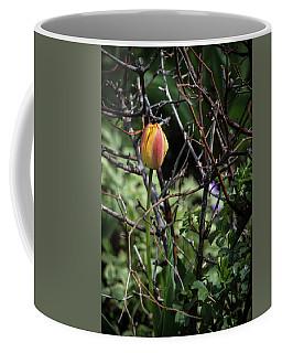 Spring Tulip Bud Coffee Mug