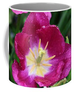 Spring Tulips 47 Coffee Mug by Pamela Critchlow