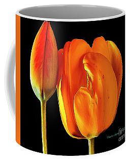 Spring Tulips V Coffee Mug