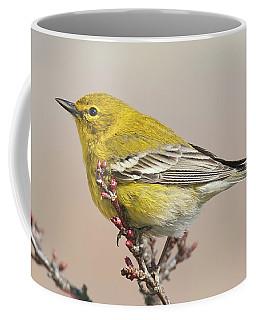 Spring Warbler 1 2017 Coffee Mug