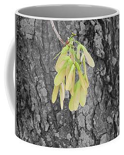 Spring Whirligig Coffee Mug