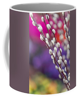 Spring Willow Branch Of White Furry Catkins Coffee Mug