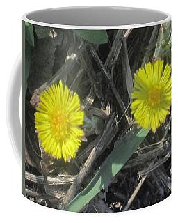 Spring Yellow Daisy Coffee Mug