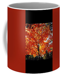 Coffee Mug featuring the photograph Springing Into Fall by Aaron Martens