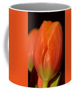 Spring's First Blush Coffee Mug