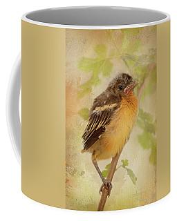 Spring's Sweet Song Coffee Mug