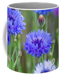 Springtime Blues Coffee Mug