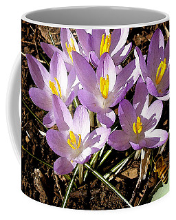Springtime Crocuses  Coffee Mug