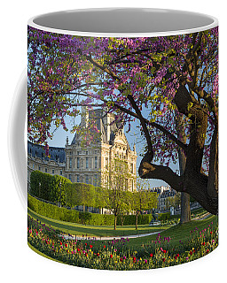 Coffee Mug featuring the photograph Springtime In Paris by Brian Jannsen