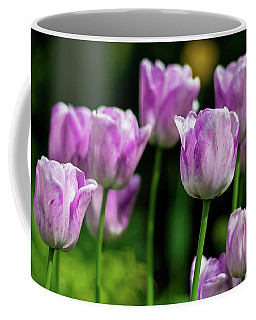 Springtime In Stratford Coffee Mug