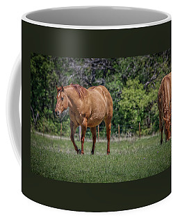 Coffee Mug featuring the photograph Springtime In Texas Fields by Elaine Malott