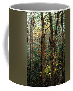 Coffee Mug featuring the photograph Springtime In The Nc Pines by Jim Moore