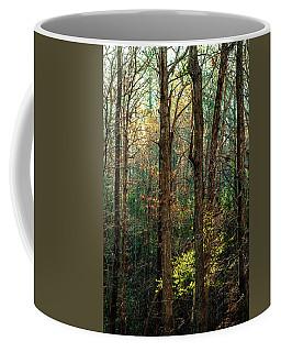 Springtime In The Nc Pines Coffee Mug