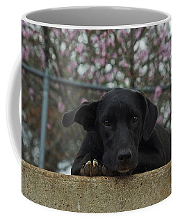 Springtime Independence Coffee Mug