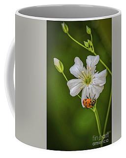 Springtime Ladybug Coffee Mug