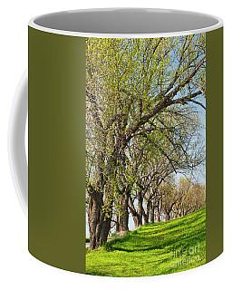 Springtime Maples Coffee Mug by Alan L Graham