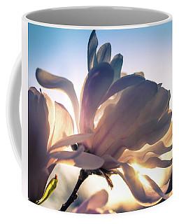 Springtime Sunset Coffee Mug