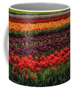 Coffee Mug featuring the photograph Springtime Tulips by Susan Candelario
