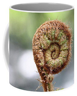 Sprout Of Ferns Coffee Mug by Michal Boubin
