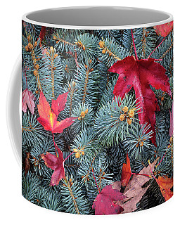Coffee Mug featuring the photograph Spruce And Maple by Mark Mille