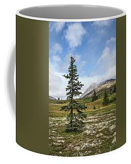 Spruce Tree In Summer Coffee Mug