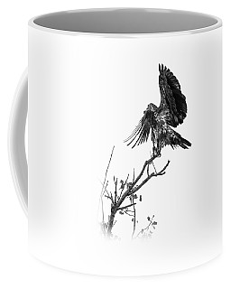 Squaw Creek Red-tail Coffee Mug