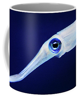 Coffee Mug featuring the photograph Squid by Anthony Jones