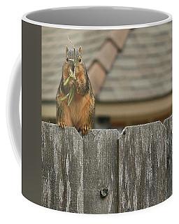 Squirle Coffee Mug