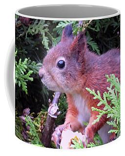 Squirrel 3 Coffee Mug