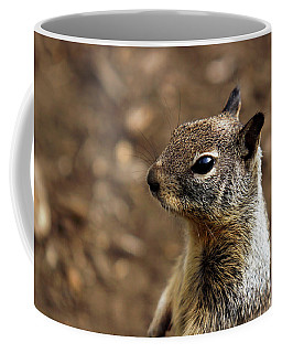 Squirrel At Moonstone Beach, California - 004 Coffee Mug