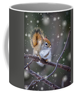 Squirrel Balancing Act Coffee Mug