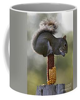 Squirrel Buffet Coffee Mug