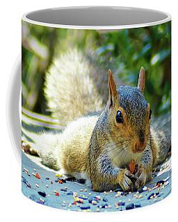 Squirrel Closeup Coffee Mug