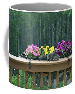 Squirrel Heimlich Coffee Mug
