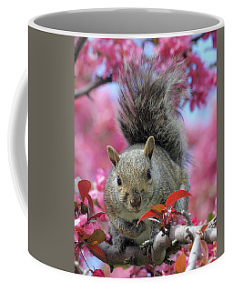 Coffee Mug featuring the photograph Squirrel In Apple Blossoms by Doris Potter