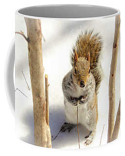 Coffee Mug featuring the photograph Squirrel In Snow by Alison Frank